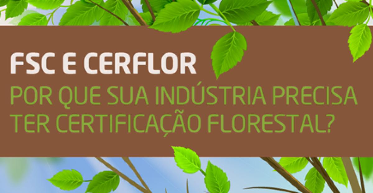 Infográfico: Certificação Florestal para a indústria